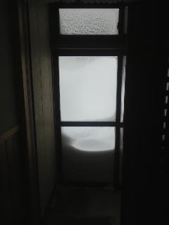 雪、記録更新