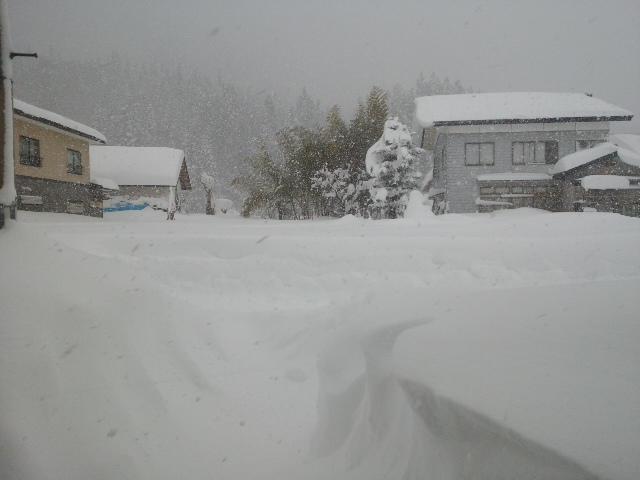 久しぶりの「ひでぇー」雪